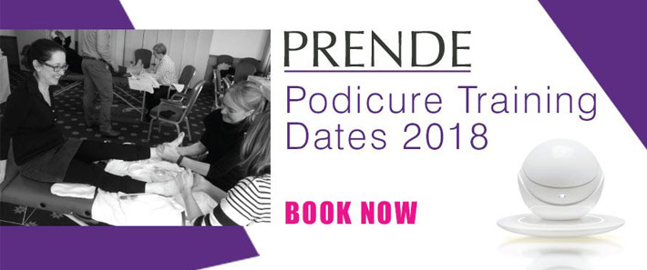 Book On Prende Warm Wax Course