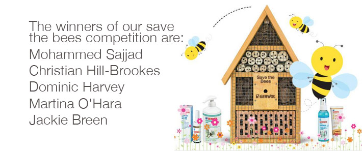 Winners of save the bees competition