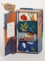 Allotment Sock Box (4)