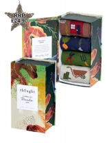 Thought Gardener Sock Gift Box (4) UK 7- 11